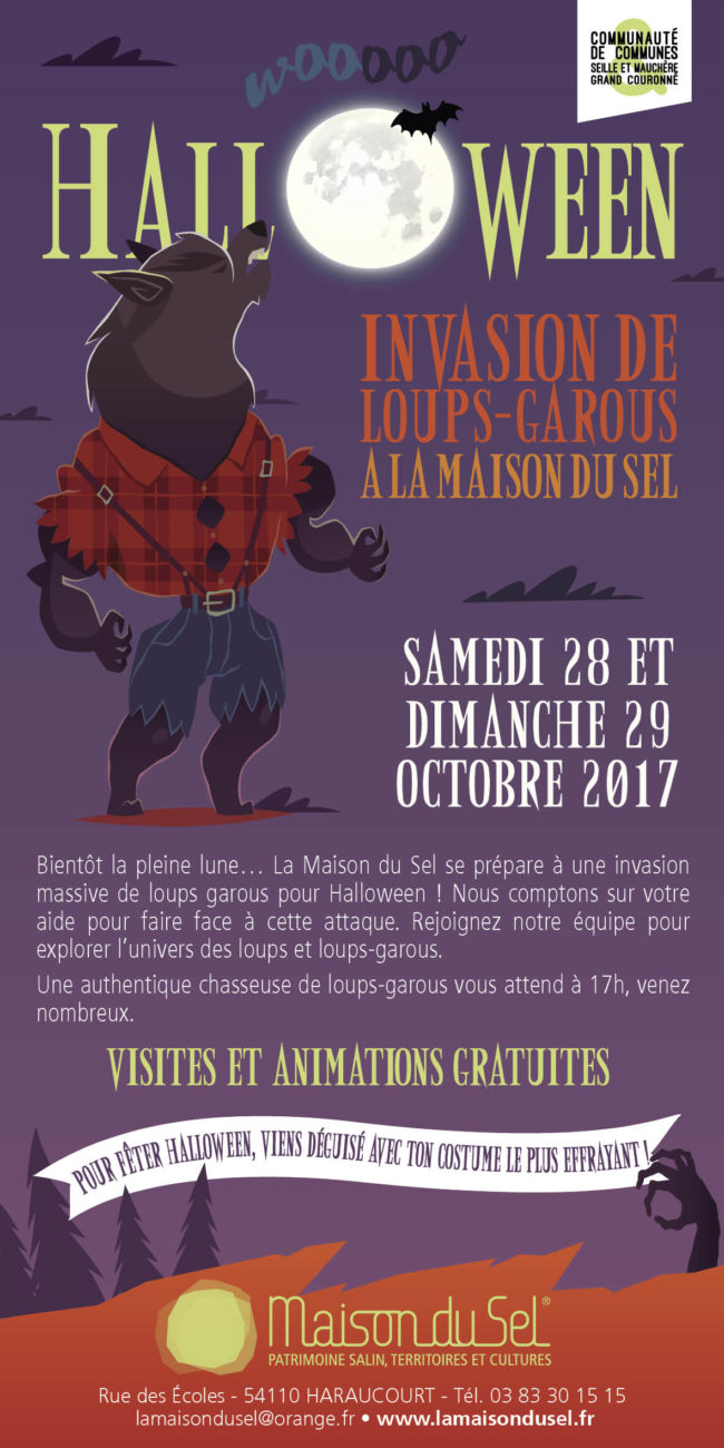FLYER HALLOWEEN 2017 MDS